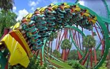Vale a Pena Ir ao Busch Gardens?