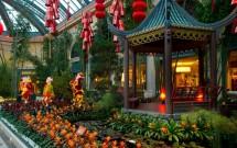 Jardim do Ano Novo Chinês