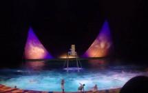 """Espetáculo """"O"""" do Cirque di Soleil"""