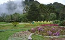 Parque Amantikir