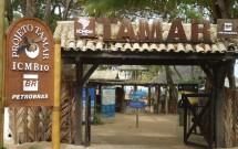 Projeto Tamar - Praia do Forte