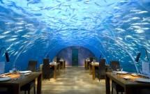 Ithaa Undersea (Rangali Island, Maldivas)