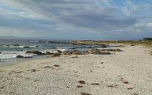 Praia na 17 Mile Drive
