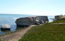 Pedras na Orla de Pismo Beach
