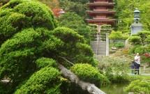 Jardim Japonês no Golden Gate Park