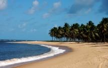 Praia do Gunga é um dos melhores passeios em Maceió