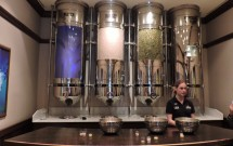 Os ingredientes da cerveja