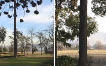 Jardins e vinhedos da Vinícola Undurraga
