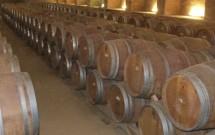 Barris de vinho na Vinícola Undurraga