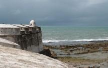 Mar Visto do Forte dos Reis Magos