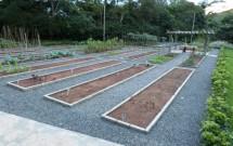 Horta Orgânica no Haras Morena