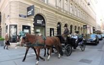 Charrete em Viena