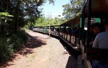 Trêm que Circula Pelo Parque Nacional do Iguazú