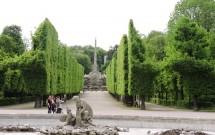 Árvores curiosamente podadas, delimitando a via