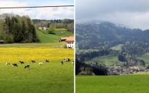 Belos campos entre Broc e Gruyères