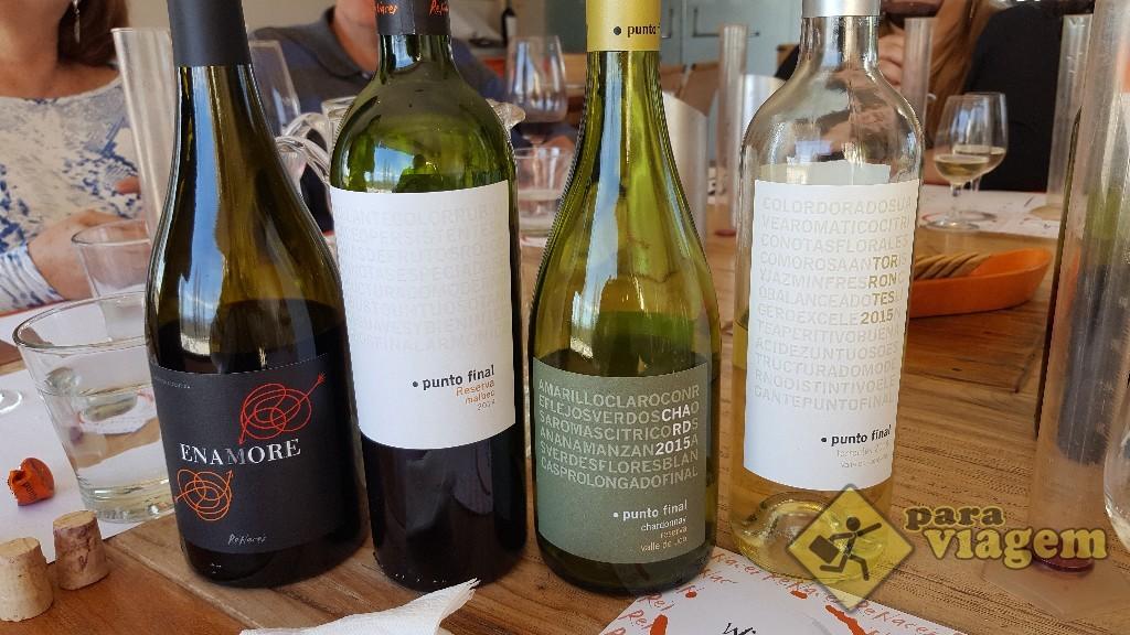 Vinhos da degustação da Vinícolas Renacer