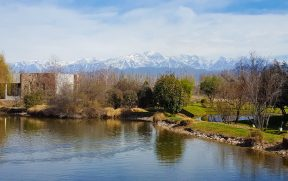Vinicola Renacer em Mendoza