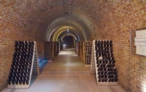 Cave da Vinícola Chandon em Mendoza