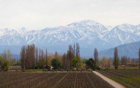 Vista da Vinícola Belasco de Baquedano - Lujan de Cuyo em Mendoza