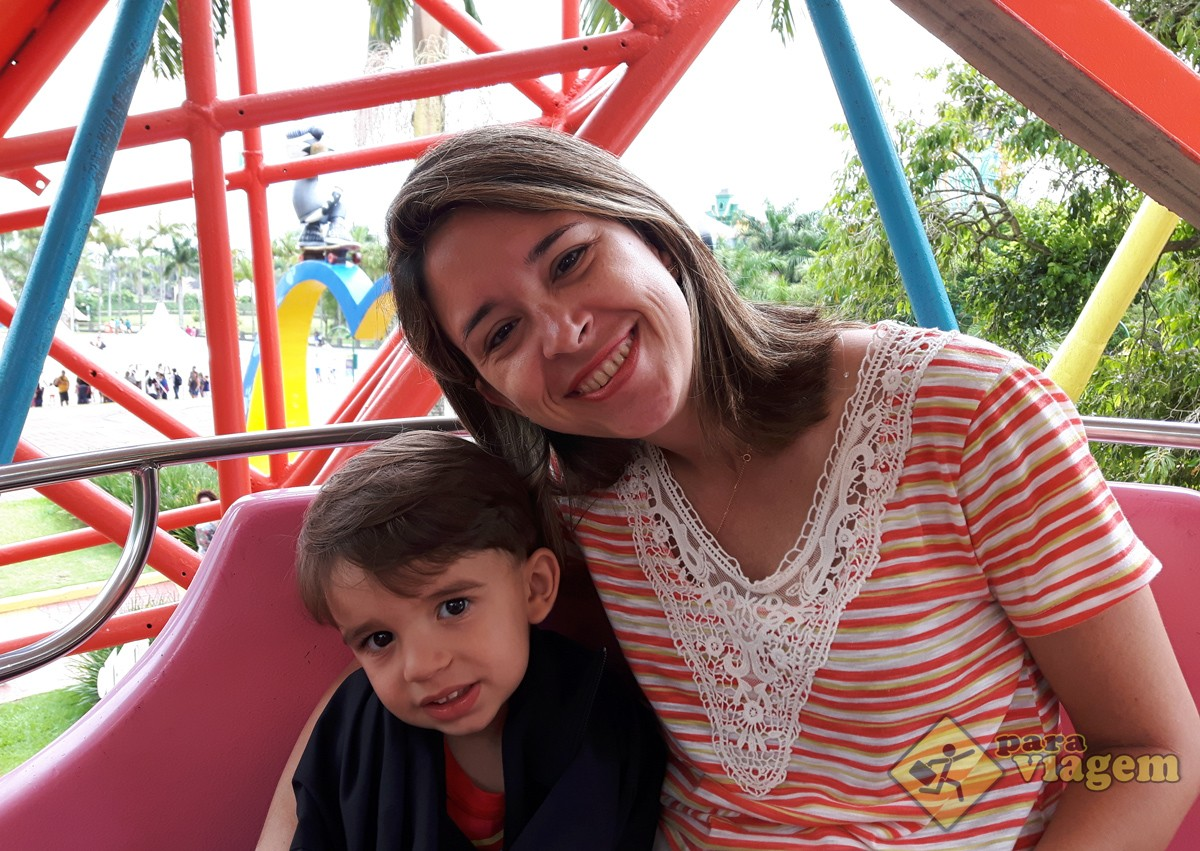 Mãe e Filho na Roda Gigante