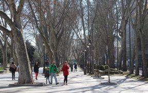 Paseo del Prado: ótima pra caminhar