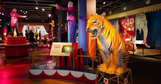 Museu do Circo - The Ringling