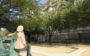 Jardim de Notre Dame em Paris