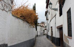 """Muito muro do Albaicín esconde um """"Carmen"""""""
