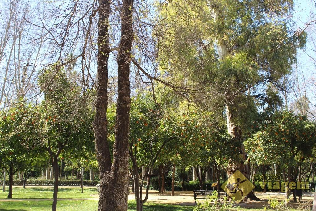 Parque Maria Luisa em Sevilha