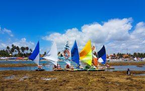Porto de Galinhas: Tudo Sobre o Passeio das Piscinas Naturais