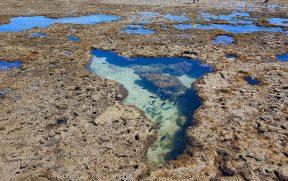Piscina natural formando o mapa do Brasil