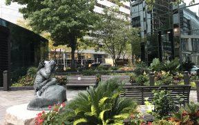 O agradável Downtown de Ottawa