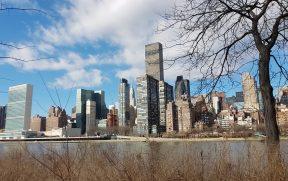 Manhattan vista da Roosevelt Island