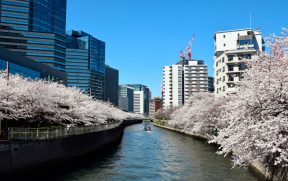 Rio Meguro em Shinagawa