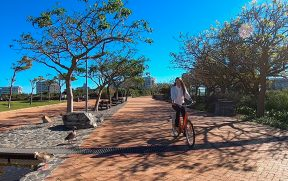 Passeio de bicicleta no Gren Point Park