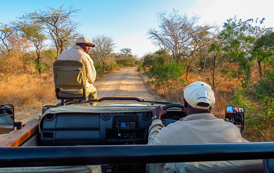 Ranger e Tracker em Safari no Kapama Southern Camp