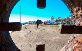 Escultura de Rinoceronte em Sea Point