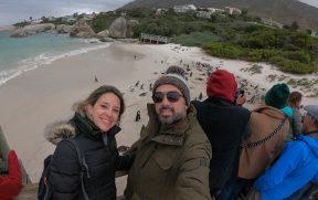 Selfie disputada em Boulders Beach