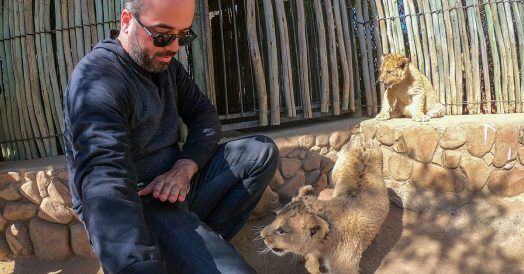 Bricando com Filhotes de Leões no Ukutula