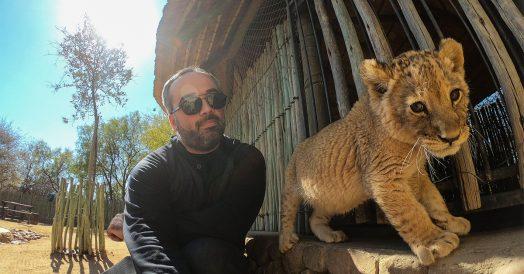 Selfie Filhote de Leão no Ukutula