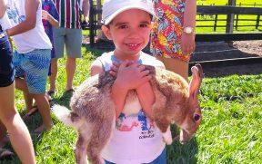 Crianças com um coelho na fazendinha