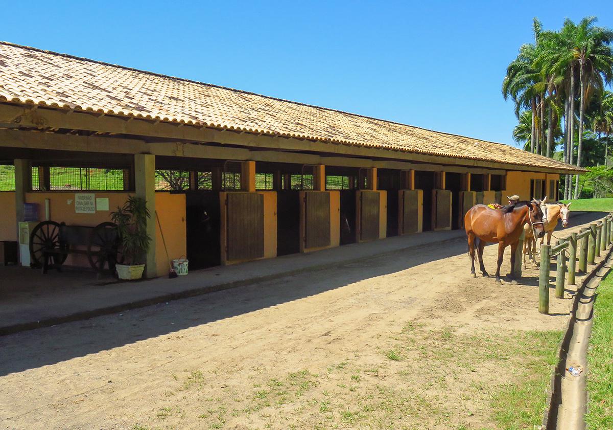 Estábulo da Fazenda Ribeirão